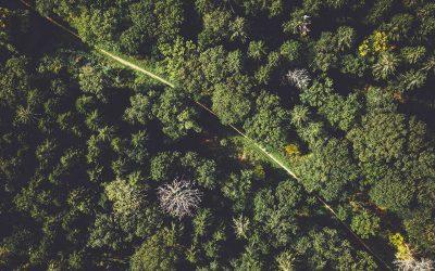Ecomondo 2021 the Green Technology Expo